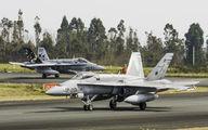 C.15-62 - Spain - Air Force McDonnell Douglas EF-18A Hornet aircraft