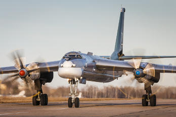 RF-94178 - Russia - Air Force Tupolev Tu-95MS