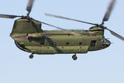 D-101 - Netherlands - Air Force Boeing CH-47D Chinook aircraft