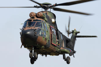 S-440 - Netherlands - Air Force Aerospatiale AS532 Cougar
