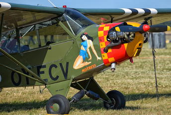 OY-ECV - Private Piper L-4 Cub
