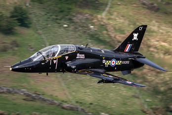 XX202 - Royal Air Force British Aerospace Hawk T.1/ 1A