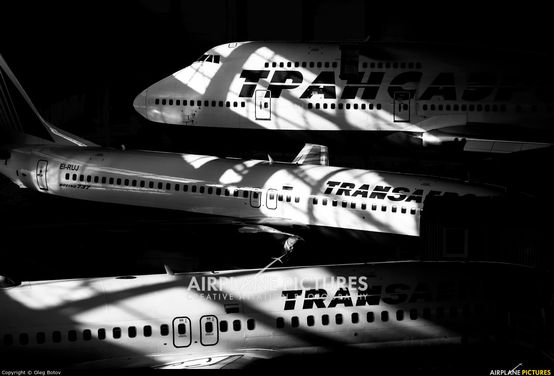 Transaero Airlines EI-RUJ aircraft at Moscow - Vnukovo