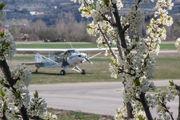 D-EKLO - Private Piper PA-18 Super Cub aircraft