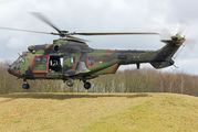 S-442 - Netherlands - Air Force Aerospatiale AS532 Cougar aircraft