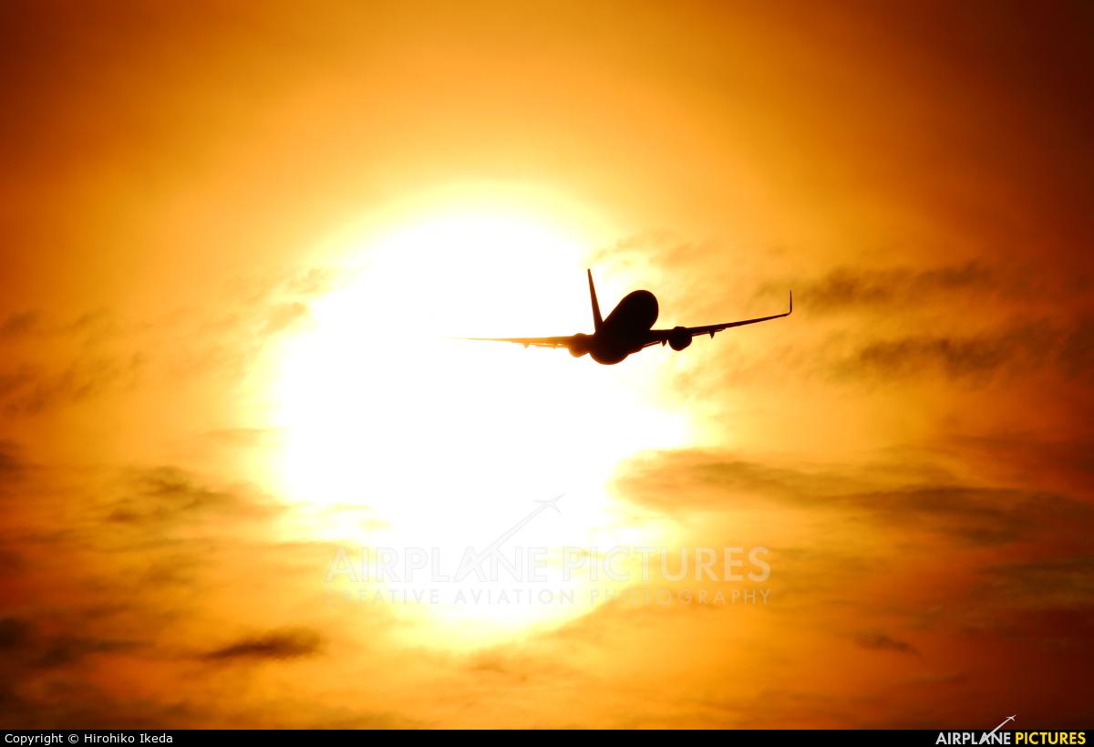 Solaseed Air - Skynet Asia Airways JA804X aircraft at Kobe
