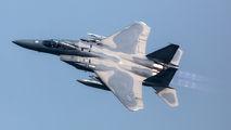 85-0106 - USA - Air National Guard McDonnell Douglas F-15C Eagle aircraft