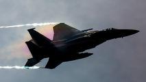 86-0155 - USA - Air National Guard McDonnell Douglas F-15C Eagle aircraft