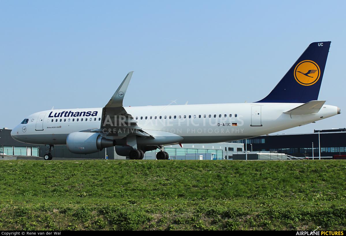 Lufthansa D-AIUC aircraft at Amsterdam - Schiphol