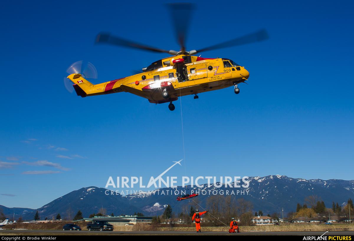 Canada - Air Force 149909 aircraft at Chilliwack