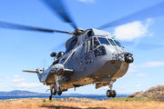 12413 - Canada - Air Force Sikorsky CH-124A Sea King aircraft