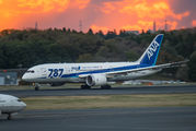JA823A - ANA - All Nippon Airways Boeing 787-8 Dreamliner aircraft
