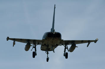 31+10 - Germany - Air Force Eurofighter Typhoon