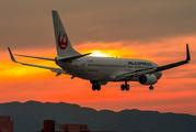 JA342J - JAL - Express Boeing 737-800 aircraft