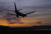 JA71AN - ANA - All Nippon Airways Boeing 737-800 aircraft