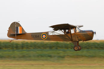 ZS-VWP - Private Auster AOP.5