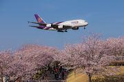 - - Thai Airways Airbus A380 aircraft