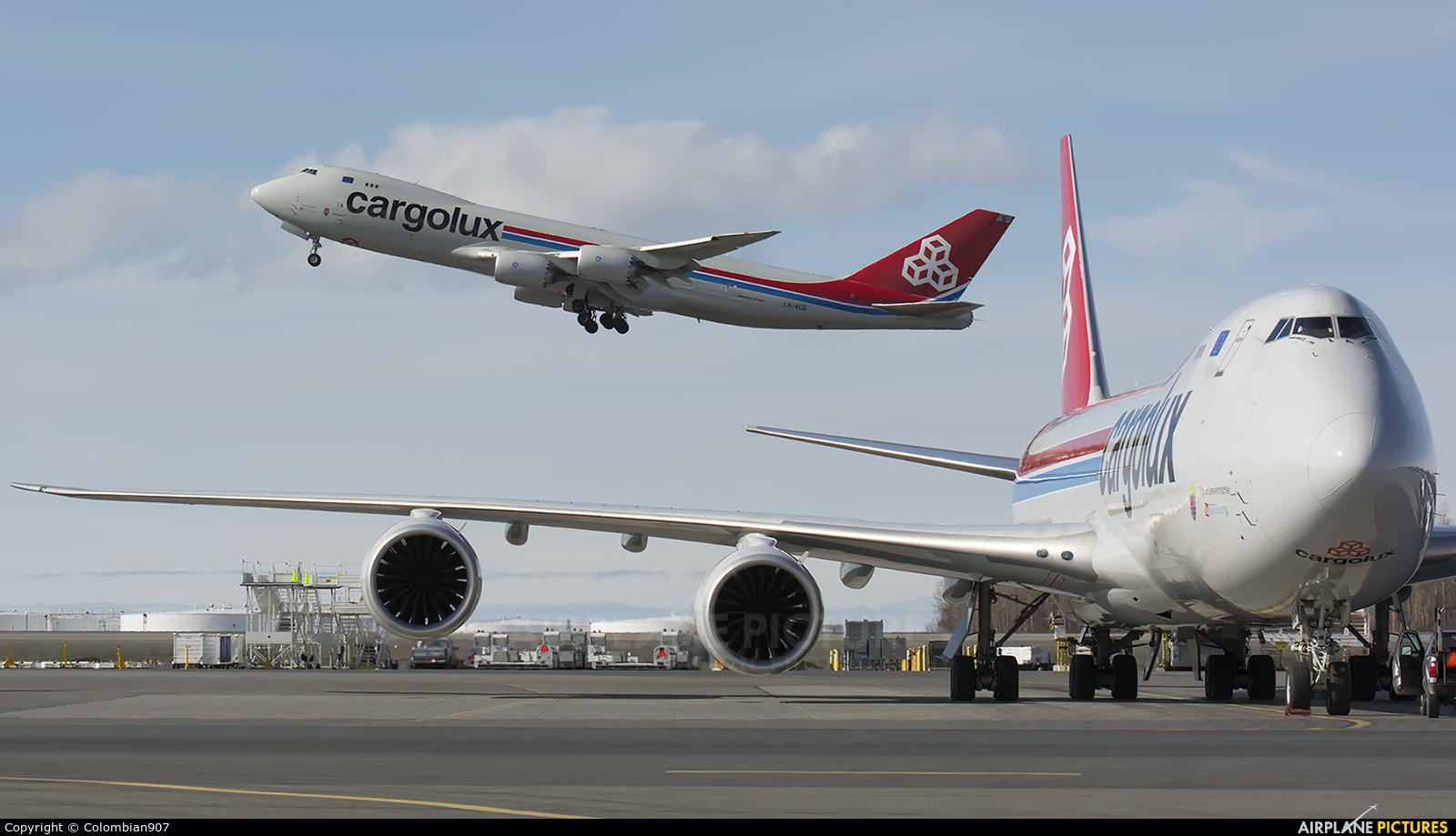 Cargolux LX-VCD aircraft at Anchorage - Ted Stevens Intl / Kulis Air National Guard Base
