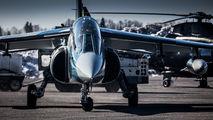C-GJTA - Top Aces Dassault - Dornier Alpha Jet A aircraft
