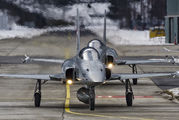 J-3005 - Switzerland - Air Force Northrop F-5E Tiger II aircraft