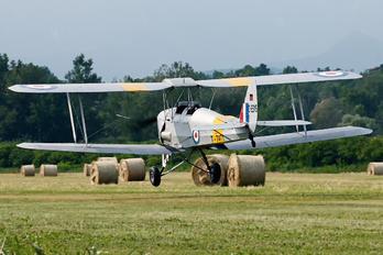 D-ESYS - Private de Havilland DH. 82 Tiger Moth