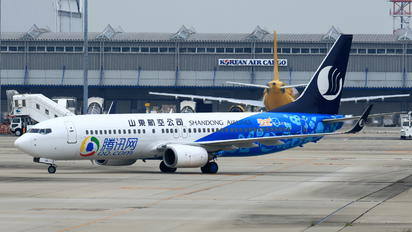B-5119 - Shandong Airlines  Boeing 737-800