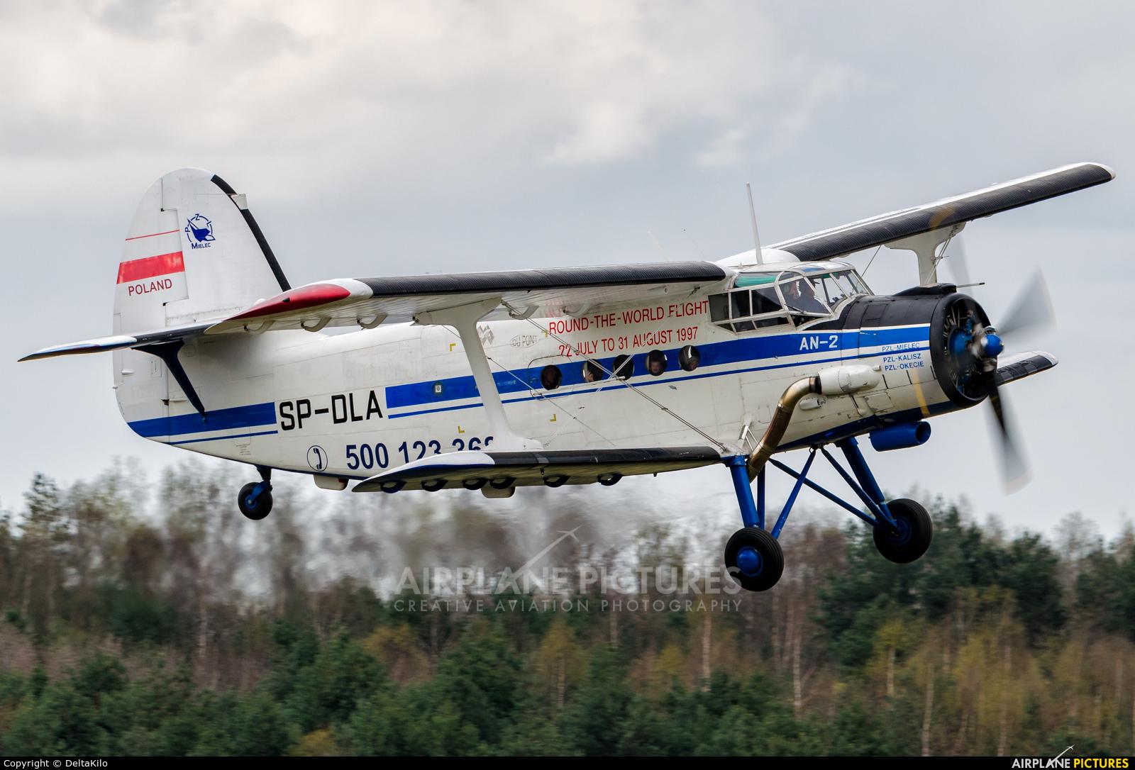Private SP-DLA aircraft at Poznań - Kobylnica