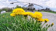 4437 - Poland - Air Force Mil Mi-2 aircraft