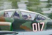 017 - Bulgaria - Air Force Sukhoi Su-25K aircraft