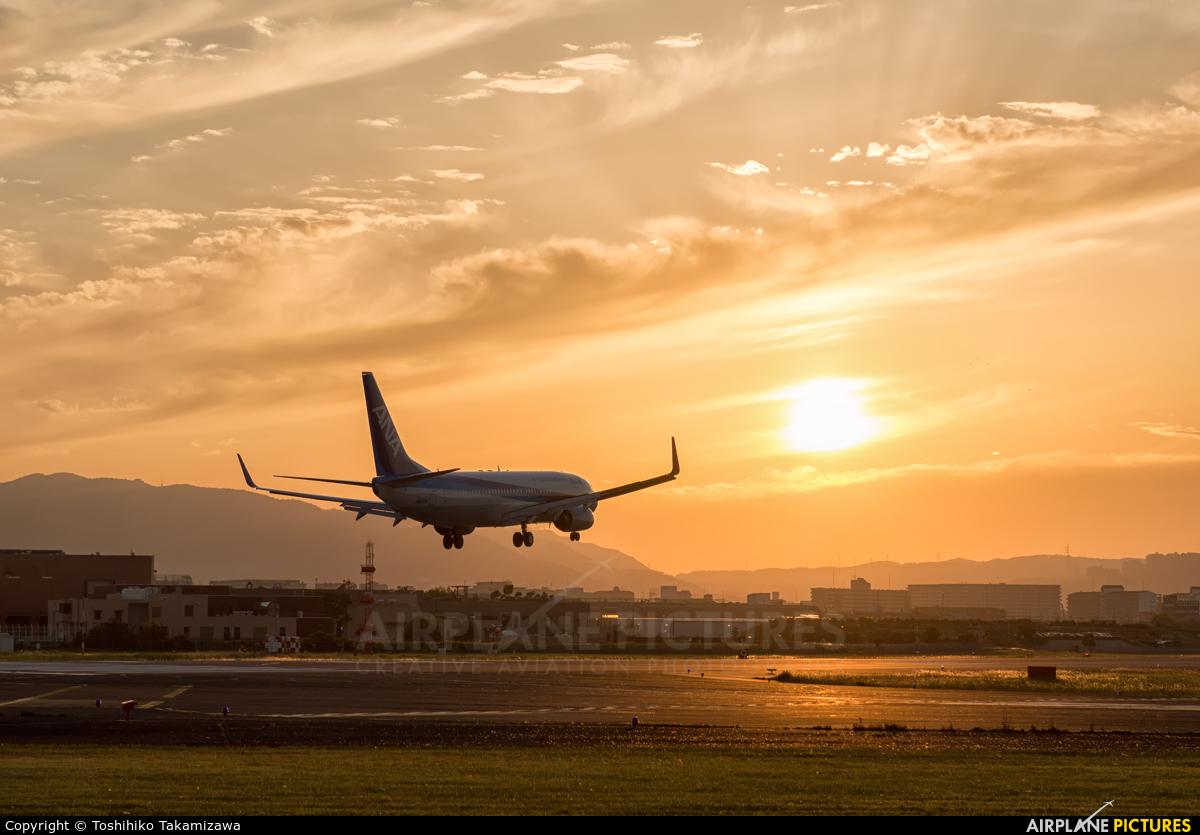 ANA - All Nippon Airways JA81AN aircraft at Osaka - Itami Intl