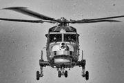 ZZ380 - Royal Navy Agusta Westland AW159 Lynx Wildcat AH.1 aircraft