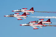 71-3049 - Turkey - Air Force : Turkish Stars Canadair NF-5A aircraft