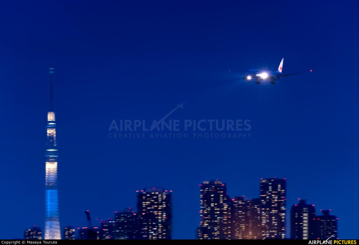 JAL - Japan Airlines - aircraft at Tokyo - Haneda Intl