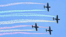 - - Pioneer Team Alpi Pioneer 300 aircraft