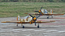 YR-UAU - Aerobatic Yakkers Yakovlev Yak-52TW aircraft