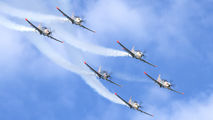 """038 - Poland - Air Force """"Orlik Acrobatic Group"""" PZL 130 Orlik TC-1 / 2 aircraft"""