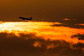 JA61AN - ANA - All Nippon Airways Boeing 737-800