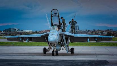 204 - USA - Navy McDonnell Douglas F/A-18F Super Hornet