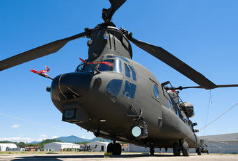 MM81780 - Italy - Army Boeing CH-47F Chinook