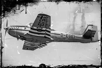 D-EGEI - Private Piaggio P.149 (all models)