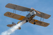 D-ESYS - Private de Havilland DH. 82 Tiger Moth aircraft