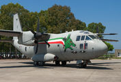 MM62217 - Italy - Air Force Alenia Aermacchi C-27J Spartan aircraft
