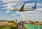 JA59AN - ANA - All Nippon Airways Boeing 737-800 aircraft