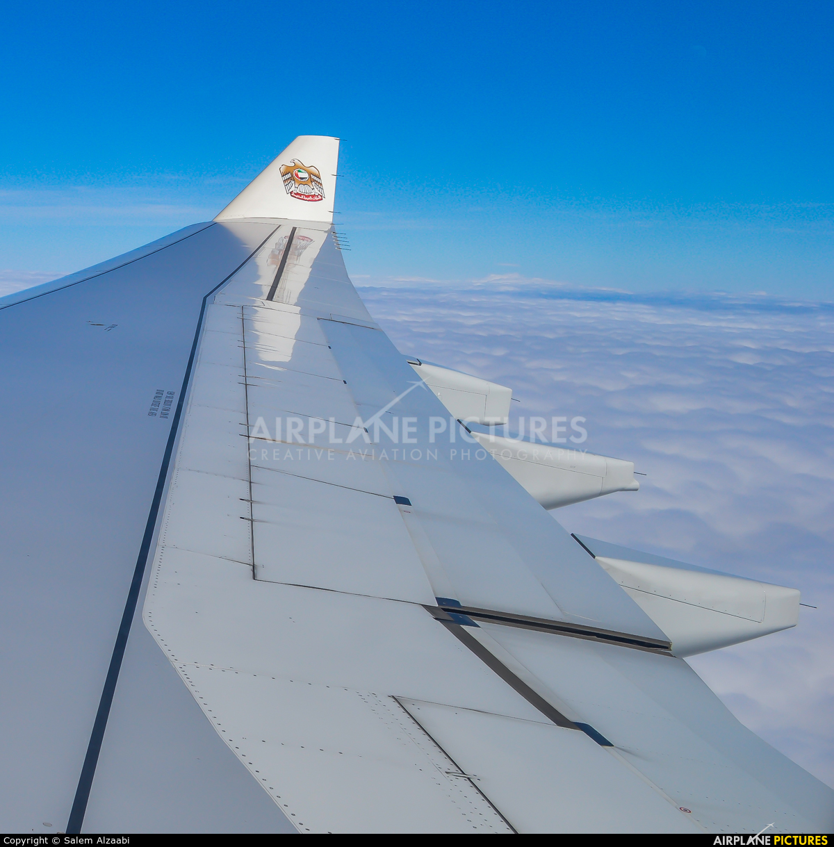 Etihad Airways A6-AFE aircraft at In Flight - International