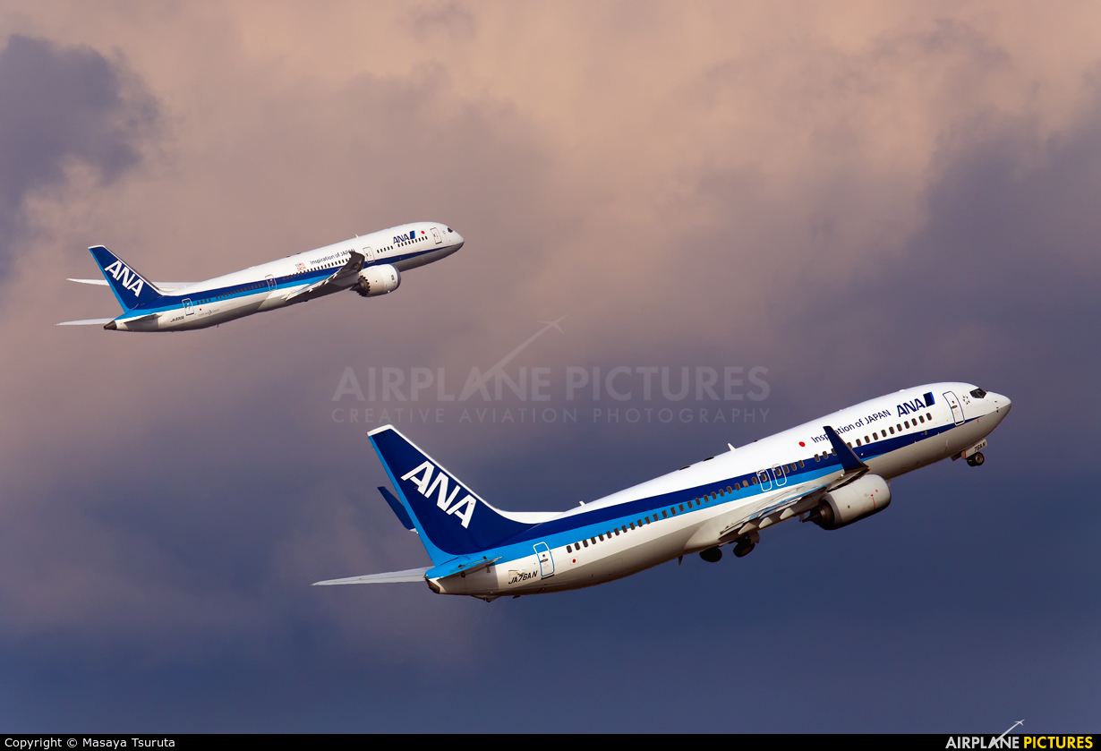 ANA - All Nippon Airways JA76AN aircraft at Tokyo - Haneda Intl