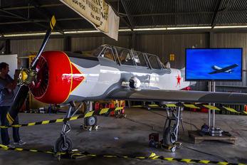 EC-LTK - Private Yakovlev Yak-52