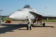 HN-415 - Finland - Air Force McDonnell Douglas F-18C Hornet aircraft