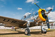 NX80FR - The Fighter Collection Curtiss 75A-1 Hawk aircraft