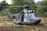 S-441 - Netherlands - Air Force Aerospatiale AS532 Cougar aircraft