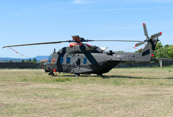 81546 - Italy - Army NH Industries NH-90 TTH